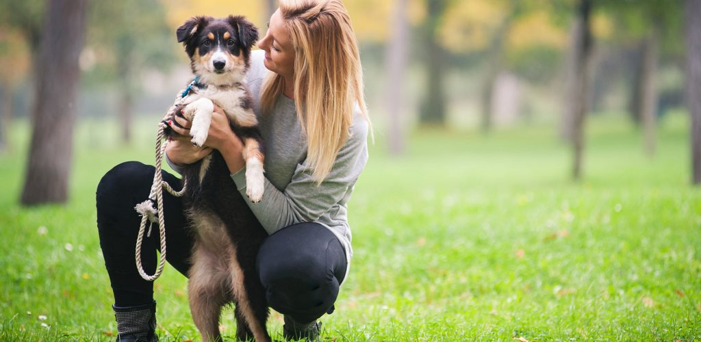 Young woman playing with Australian Shepherd dog outdoors in the park. ; Shutterstock ID 179803604; PO: TODAY.com; Other: Mike Smith